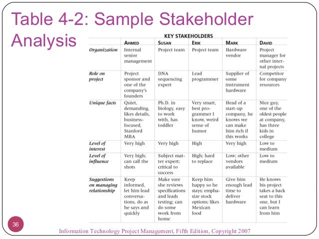project management stakeholder analysis example